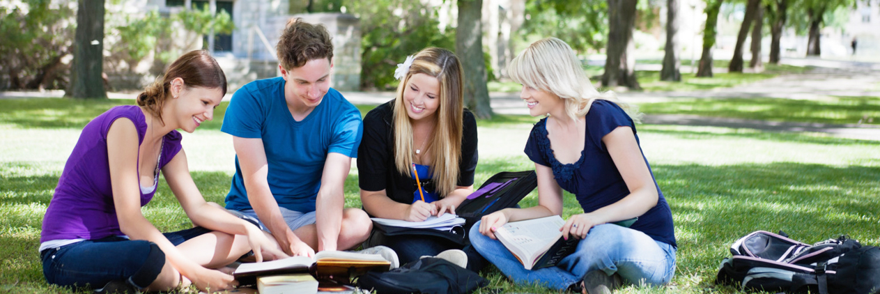Literature review dissertation help companies